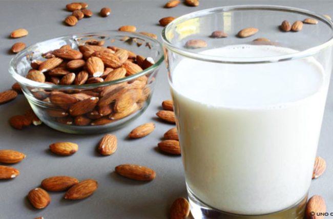Receita de leite vegetal para acrescentar em sua dieta